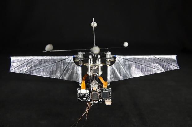 Робот-колибри