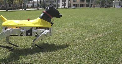 робот-куче