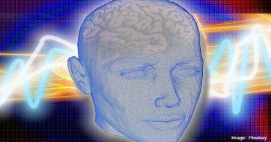 мозък на човек
