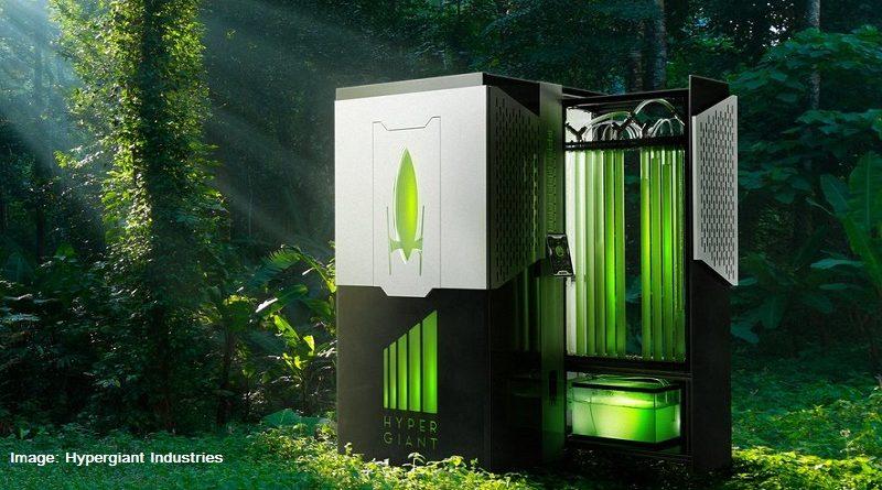 биореактор с водорасли