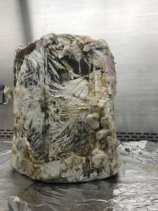 Табуретка произведена от мицел на гъби