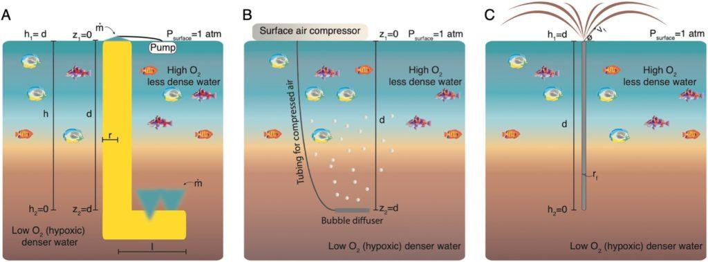 Трите метода, използвани за преодоляване на хипоксия във водоемите