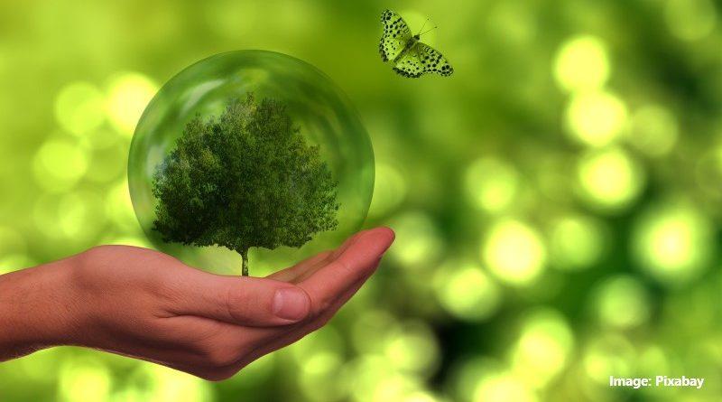 Изследване: Щастливите хора се грижат по-добре за околната среда и устойчивото развитие